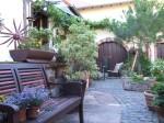 SF Pfalz Stammtisch August: Weinstube zur Blume am21.08.2015